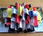 Handmade accordion book by Dorsey Hogg