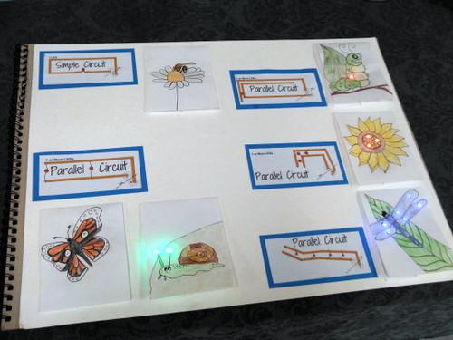 Samples of paper circuits