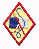 Girl Scout Cadette badge