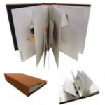 Pop-up Books by Elissa Campbell